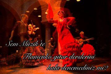 flamenko-gitar-dersi-ankara